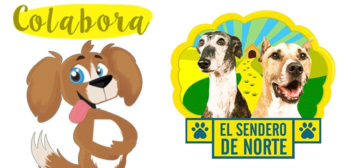 Colabora-con-el-sendero-de-norte-hobby-mascotas